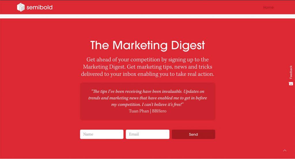 Email marketing agency Norfolk form sign up